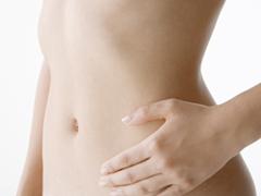 腸内イメージ写真